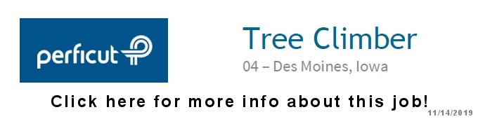 Perficut Tree Climber Job Opening in Des Moines, Iowa