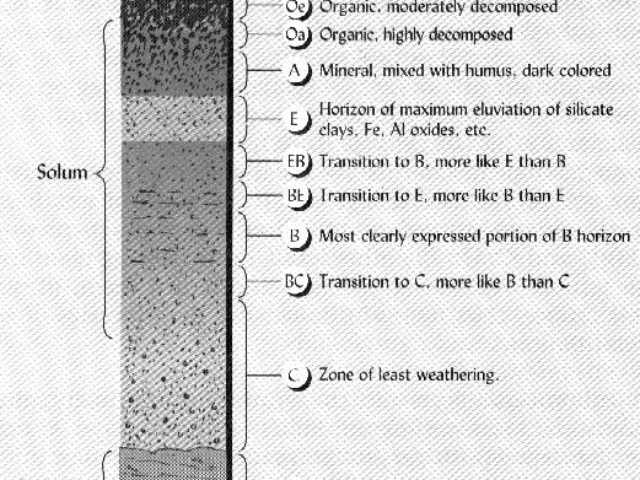 Diagram of Soil Layers